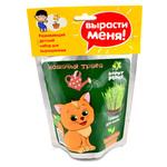 Набор для выращивания Happy Plant «Кошачья трава»