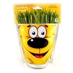 Набор для выращивания Happy Plant Сафари Львенок