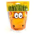 Набор для выращивания Happy Plant Сафари Жираф